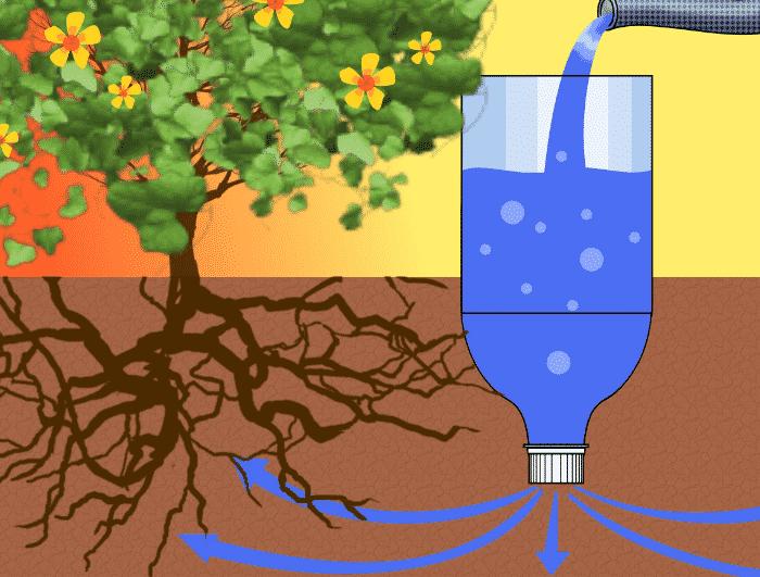 9 ventajas 3 desventajas del riego por goteo en las - Tipos de riego por goteo ...