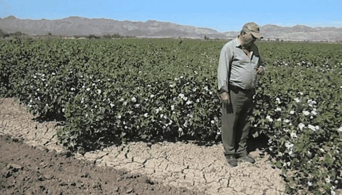 5 diferentes tipos de suelo que debes conocer para sembrar for Tipos de revestimientos para suelos