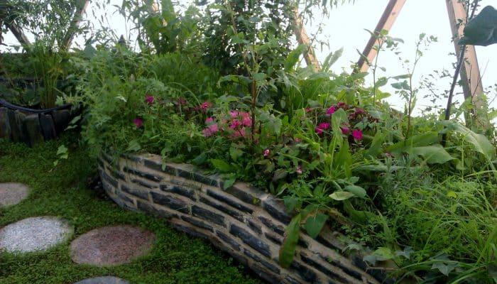 Abono organico para plantas agronomaster - Abono organico para plantas ...