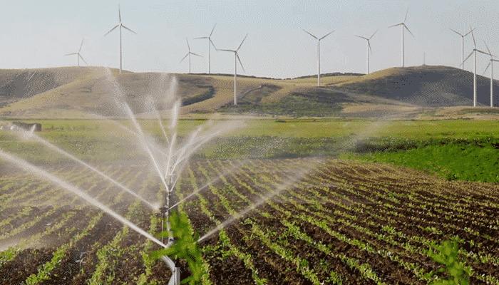 3 tipos de sistemas de riego agr cola que puedes aprovechar - Tipos de riego por goteo ...
