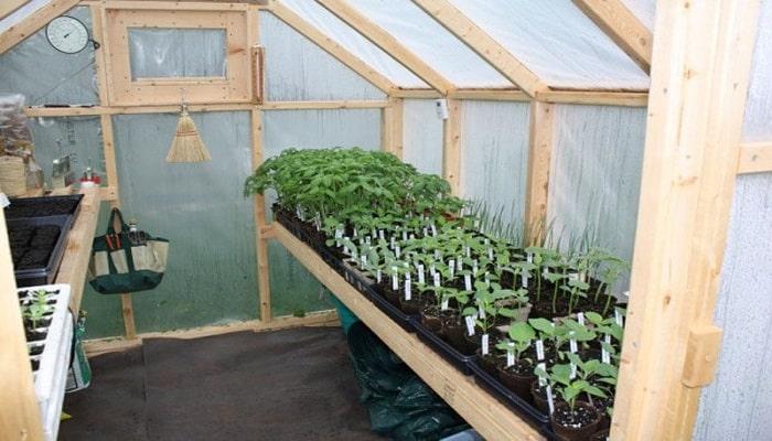 Los 4 tipos de invernaderos caseros m s usados haz el tuyo for Como iniciar un vivero