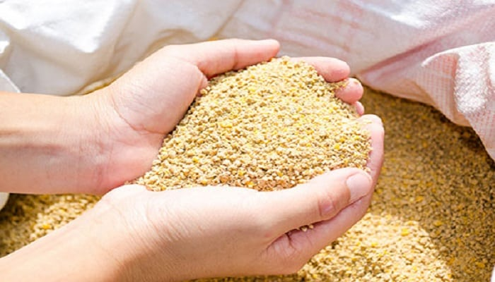 Alimento balanceado para pollos explota su potencial for Alimentos balanceados para truchas