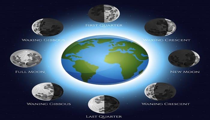 ¿Las Fases De La Luna Influyen En El Crecimiento De Tus